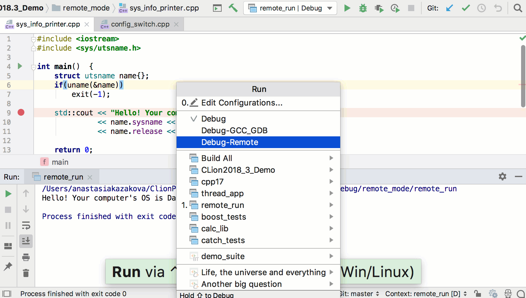 Run & Debug Configurations - Features | CLion