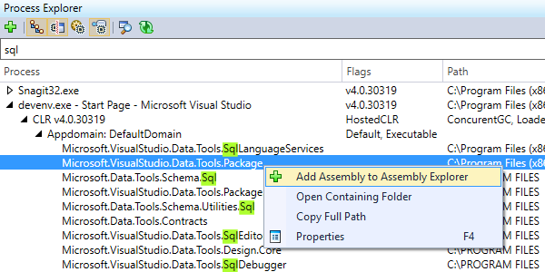 Process Explorer window in dotPeek