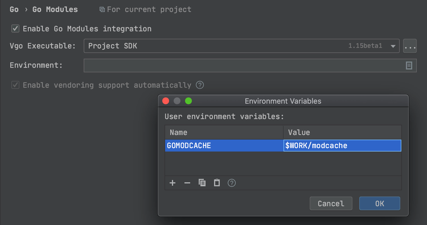 Set new GOMODCACHE environment variable in the Environment Variables dialog
